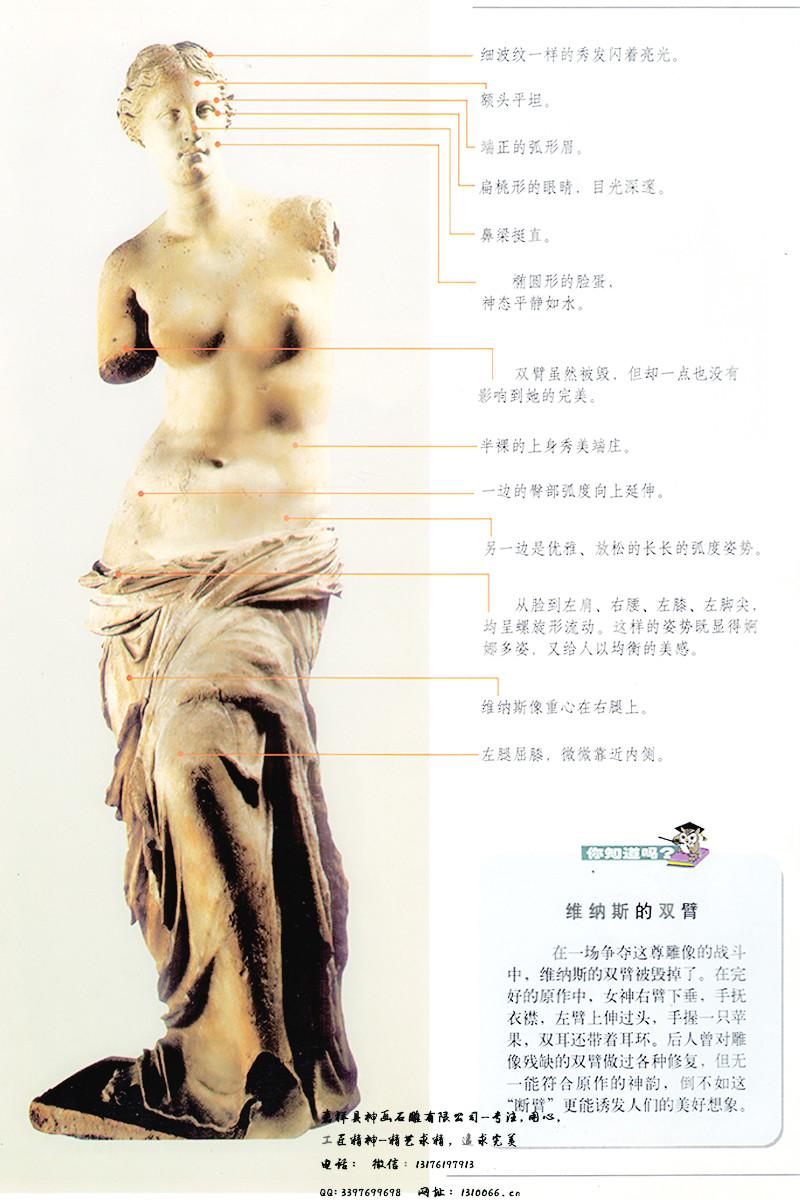 世界雕塑女神_米洛的维纳斯
